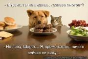 http://thumbnails32.imagebam.com/10262/75670f102617387.jpg