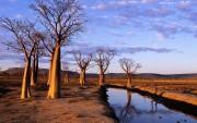 Beautiful places in Australia D129c6107966757