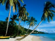 Beautiful Beaches Of The World HQ Wallpapers 3df4e2108500563