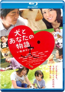 Happy Together: All About My Dog 2011 m720p BluRay x264-BiRD